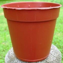 Pots Ronds 5 cm d'occasion /100
