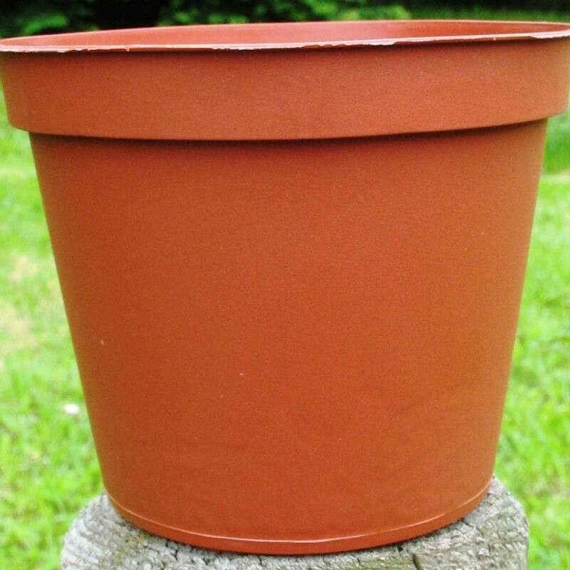 Pots Ronds 8 cm /50