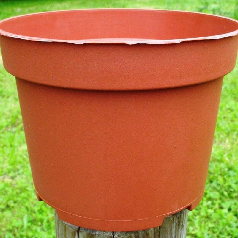 Pots Ronds 10,5 cm /20